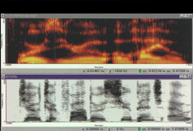 Forensic Voice Analysis image